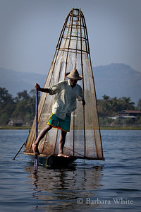 Fisherman On Lake Inle
