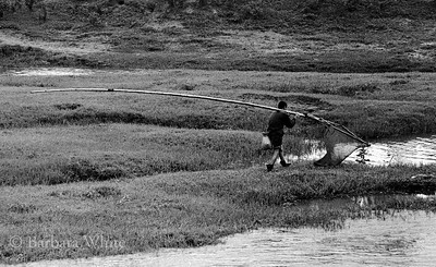 Fisherman With Large Net