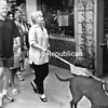 Alvin Reiner dodged traffic to grab this shot of the Clintons and their dog Buddy on Martha's Vineyard in August 2001. Could it be, with this photo, that results of next fall's election will prove he's taken pictures of three, not two, presidents?<br><br>(Staff Photo/Alvin Reiner)