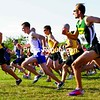 Runners take off in the 20th Annual Run for Jon Saturday held at Forrence Orchards on the Mannix Road. Peru's Sara Facteau broke the course record on the women's side, while Rouses Point's Aaron Robertson was the top male and overall finisher.<br><br>(P-R Photo/Gabe Dickens)