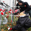 Liam Vogl, 13, of Plattsburgh and George Schock, a Plattsburgh State student, lay flowers on a &#147;ghost bike&#148; dedicated to Yee Hao &#147;Bryan&#148; Chiel. The roadside memorial was placed near the on-ramp for Exit 37 where Chiel was killed last month by a tractor-trailer while riding his bicycle. The ceremony was part of Petal to Protect &#151; an event sponsored by the college&#146;s Biketopia club to promote bike safety and advocate for safer streets for cyclists. Ghost bikes, a tradition that started in 2003 in Missouri, are usually junk bikes painted white and chained to a location near an accident to serve as a somber reminder of bike tragedies and to support cyclists&#146; rights.<br><br>(P-R Photo/Gabe Dickens)