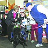 Kitty Hannon (left) of Saranac Lake and her daughter Michaela are greeted by Devon, a specially trained Canine Assistants service dog, held by Roddy Glasser. Michaela, who has spastic quadriplegia cerebral palsy, will soon have a service dog of her own and so was introduced to this one at Price Chopper in Lake Placid recently. Devon's job is to watch over Glasser's daughter, Jillian, who has potentially life-threatening seizures.<br><br>(P-R Photo/Jack LaDuke)