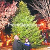 Keith Wells of Saranac Lake gives Ethan Knight, 3, also from the village, a helping hand switching on the downtown Christmas tree in Berkley Green. The annual tree lighting was part of the Home for the Holidays Celebration. The Saranac Lake High School Chorus sang Christmas carols at the event, too.<br><br>(P-R Photo/Jack LaDuke)
