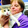 This kitty, newly named Diane, held by Adirondack Humane Society Manager Lil Cassidy, seems happy to pose as a poster cat for neglected felines. She and 18 others left outside the shelter are friendly, but most are underweight and have dental issues. <br><br>(Staff Photo/Kelli Catana)