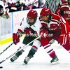 B'town's Kyle Bisonette (left) and Saranac's Jeremy Barber fight for possession of the puck during a boys' hockey game Saturday.<br><br>(P-R Photo/Gabe Dickens)