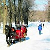 A winter day at Mount Royal Park.<br><br>(P-R Photo/Steve Howell)