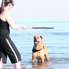 Plattsburgh resident Charline Faller and her dog, Taj, a ridgeback-boxer mix, enjoy the warmest weather of the season thus far with a game of fetch at the Plattsburgh City Beach Thursday afternoon. The beach will officially open for the season on Saturday, June 15, from 9 a.m. to 9 p.m. daily.<br><br>(P-R PHOTO/GABE DICKENS)