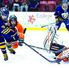 A shot by Lake Placid's Bjorn Kroes (9) is deflected by a diving Nick LaDue of Plattsburgh High. The Blue Bombers defeated the Hornets 5-3 to claim the Section VII Division II boys' hockey championship at Stafford Ice Arena Tuesday.<br><br>(GABE DICKENS/P-R PHOTO)