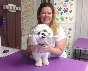 DENISE A. RAYMO/STAFF PHOTO 7-24-2016 Dog groomer and kennel operator Mindy Robinson-Monette holds Olaf, one of the pets she is entrusted to care for at her new business, Little Valley Kennel in Malone. She could get help to grow her business if Franklin County is successful in obtaining a $200,000 state grant its economic-development director is applying for this week.