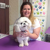 DENISE A. RAYMO/STAFF PHOTO 7-24-2016<br /> Dog groomer and kennel operator Mindy Robinson-Monette holds Olaf, one of the pets she is entrusted to care for at her new business, Little Valley Kennel in Malone. She could get help to grow her business if Franklin County is successful in obtaining a $200,000 state grant its economic-development director is applying for this week.