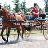 GABE DICKENS/P-R PHOTO  6-28-2016<br /> ShyAnne Koehler, an equine intern, and her Morgan, HD Saranac, give a carriage-driving demonstration at Heart's Delight Farm as a part of the William H. Miner Agricultural Research Institute Open House on Saturday afternoon in Chazy. Other highlights of the day included dairy demonstrations, wagon rides, informative exhibits and a horse-themed photo booth.