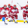 GABE DICKEN/PR-PHOTO  3-20-2016<br /> Cardinals clear the bench to celebrate their third-straight national title.