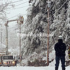 JACK LADUKE/P-R PHOTO 11-29-16<br /> Heavy snow clings to trees in Saranac Lake, endangering power lines Sunday afternoon. Some areas of the village were without power for a short while and some fender-benders were reported. Here, a repair crew mends downed power lines on Dugway Street. A Winter Storm Warning was issued for the Adirondacks and northern Champlain Valley through this evening. Heavy snow was reported throughout the region, with more than a foot expected in the mountains.