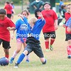 ROB FOUNTAIN/STAFF PHOTO 10-5-2016<br /> Freedom Nissan (red) and AuSable II (blue) battle for possession of the ball during the recent Keeseville Youth Soccer Tournament in Jaycee Park. The one-day non-league tournament had eight Pee Wee teams participate from the area. The event was sponsored by Fuller Excavating, Pepsico, Taylor Rental and Thwaits Logging.