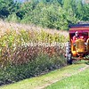 ROB FOUNTAIN/STAFF PHOTO 10-2-2016<br /> Leeward Babbie tows an old stage coach with his tractor, giving rides to families during the recent Kids Fair and Festival at the Babbie Rural and Farm Learning Museum in Peru. The event included old-time games, sack races, bobbing for apples and more.
