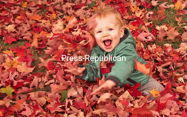 ALVIN REINER/P-R PHOTO 10-15-2016 With his mom, Lauren Fisher, nearby, 15-month-old Lucas Fisher of Wilmington frolics in brilliant maple leaves under a tree near the Sugar House Creamery on Route 9N in Upper Jay.