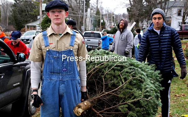 Boy Scouts Myles Madill (left) and Peter Vaiciulis head out to deliver a tree during the recent Christmas in Westport event. The scouts had 65 for sale and had sold almost half in the first hour. Also at the merry festival, the Westport Central School senior class sold wreaths, the Cub Scouts held a bottle drive, there was a fun run, arts-and-crafts sales, ornament making, gift wrapping, a spaghetti dinner and, in the evening, Santa's arrival. ALVIN REINER/ P-R PHOTO