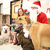 Josh Shelley (left) and LeeAnn Thomas position their three dogs, (from left) Lacey, Lila and Silver, in preparation for a photo with Santa at PetSmart in Plattsburgh. Santa will be back to pose for free photos with pets from noon to 4 p.m. this Saturday and Sunday.<br /> KAYLA BREEN/ STAFF PHOTO