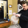 ROB FOUNTAIN/ STAFF PHOTOS<br /> Visual Changes proprietor George Munson styles the hair of 17-year customer Joan Berthiaume at the Plattsburgh beauty salon. After 42 years in the industry, Munson has cut back his hours.