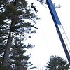 ALVIN REINER/ P-R PHOTO<br /> A member of a specialized crew from Richard Sears Tree Experts of Glens Falls is put where he needs to be to work on a towering pine near Route 9 between Elizabethtown and New Russia on Monday morning. The road was closed for several hours as a dead pine was removed and sections of a second one, both trees about 90 feet tall, were cut away to eliminate danger to power lines and vehicles traveling on the roadway.