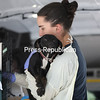 Elmore SPCA team member Anja Celikovic carefully removes Declan from his kennel after the dog was rescued from a high-kill animal shelter in Georgia. Declan and 14 other dogs and puppies were rescued from shelters in Georgia and South Carolina amid scores of pets being abandoned by people fleeing Hurricane Irma. One Love Animal Rescue assisted Elmore with securing the dogs. The shelters were too full to house the displaced pets, so the animals, if not saved by Elmore SPCA, would have been euthanized to make space. Elmore volunteers Judy Belrose and Carol Bellavance made the trip south in a rented van Thursday to pick up 25 dogs and cats. The cats were brought to Furballs Cat Rescue in Albany.<br /> KAYLA BREEN/ STAFF PHOTO