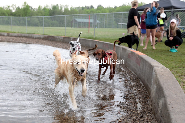 Dogs frolic in the water at the new Morrisonville Dog Park located at 22 Bullis Road at the East Morrisonville Recreation Park during the grand opening Saturday morning. A collaboration between the towns of Plattsburgh and Schuyler Falls, the park features a pond, separate areas for small and large dogs, along with various obstacles. Guests perusing the park are required to clean up after their dogs using disposal bags that are located at the park entrance along with following the posted rules. GABE DICKENS/ P-R photo