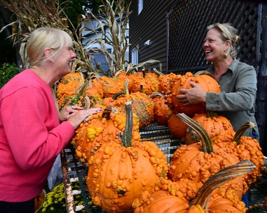 Shelly Hough (right) of Willy-Nilly Gardening in Saranac Lake talks to Petra La Barge of Tupper Lake about the pumpkins piled up here. She orders the unusual gourds from an Albany-area grower every year as autumn approaches. Front steps, stone walls and yards around the North Country are dotted with pumpkins as Halloween approaches. JACK LADUKE/ P-R Photo