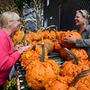 Shelly Hough (right) of Willy-Nilly Gardening in Saranac Lake talks to Petra La Barge of Tupper Lake about the pumpkins piled up here. She orders the unusual gourds from an Albany-area grower every year as autumn approaches. Front steps, stone walls and yards around the North Country are dotted with pumpkins as Halloween approaches.<br /> JACK LADUKE/ P-R Photo