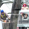Plattsburgh Municipal Lighting Department employee Steve Bedard (left), a tree surgeon, slices through the trunk of a basswood tree with a chainsaw as co-worker and lineman Dave Bezio takes up the slack in the attached strap with a crane Friday afternoon on Margaret Street in Plattsburgh. The tree had developed a growing crack from the base, which is about 40 inches in diameter, up to the fork due to rot. The workers were worried that the tree could split down the middle and threaten vehicles and pedestrians on the busy street.<br><br>(GABE DICKENS/P-R PHOTO)
