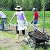 Shareholders get Keene Valley's community garden, located on the edge of Marcy Field, set up for the growing season. According to Coordinator Jim Herman, the town allows the group to utilize the land and provides water. However, the plot renters must take down the 8-foot-high deer fence each fall and then erect it again in the spring. They also must create pathways around the plots with mulching material. The gardeners must also grow their crops organically. All 35 12-by-12-foot plots have been rented for 2014. For more information, reach Herman at jim12942@gmail.com. (ALVIN REINER/P-R PHOTO)