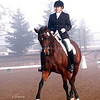 SVE Dressage 259 224