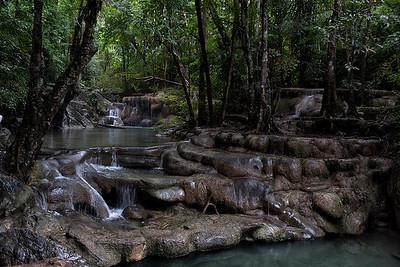 Rainforest murmur