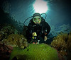 Nori our Great Dive Guide