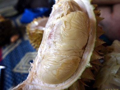 //www.yearofthedurian.com/2015/04/where-to-go-for-durian-abundance-in.html