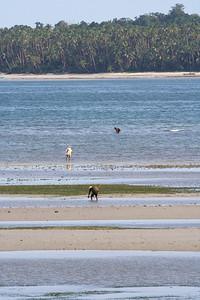 Gathering food (shellfish) at low tide, Dobo.