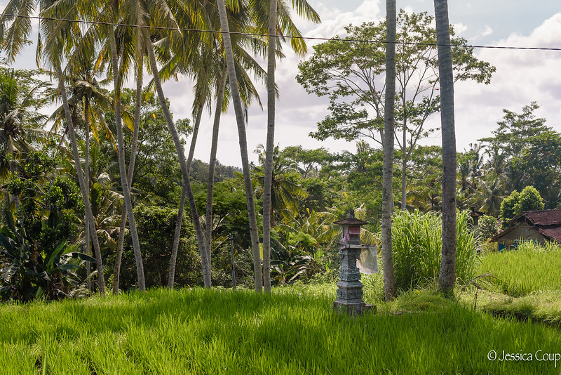 Shrine in the Field