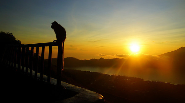 Hike up Mount Batur (an active volcano) for a spectacular sunrise viewing