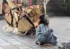 Playful monkey character in Barong traditonal dance, Ubud, Bali