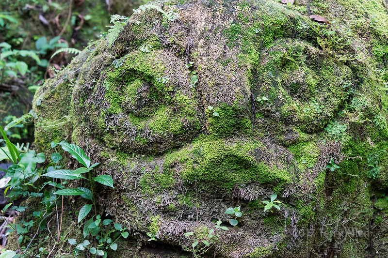 Abandoned moss-covered statue, Goa Gajah temple, Ubud, Bali Island, Indonesia