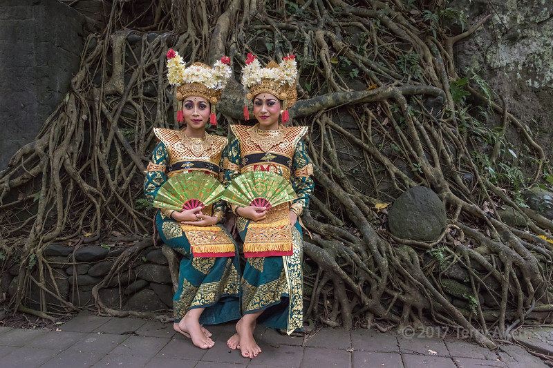 Pair of Balinese dancers in traditional attire with ficus roots in background, Monkey Forest, Ubud, Bali