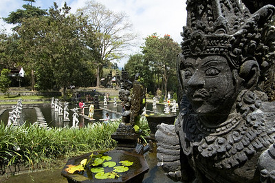How Much Money Do I Need For Bali, image copyright Chris Mitchell