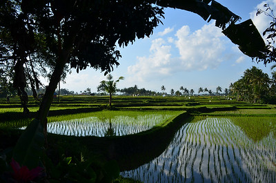 1 Week Bali Itinerary, image copyright eGuide Travel