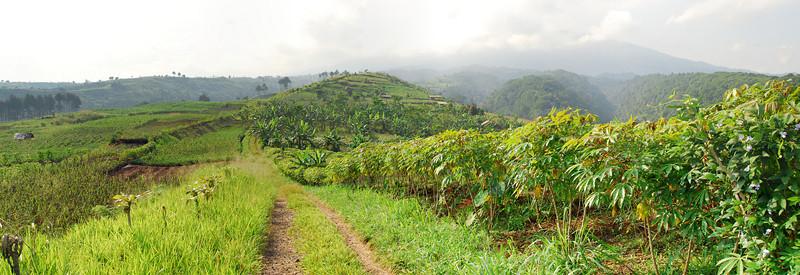 a nice panorama of the Pancawati Road