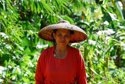 woman; work; agriculture; petani; Indonesia; Pancawati;
