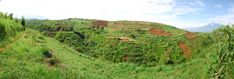 Views of the Pancawati landscape