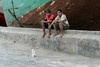 Pinisi, seamen and small ship's cat, Sunda Kelapa Harbour, Jakarta, Indonesia