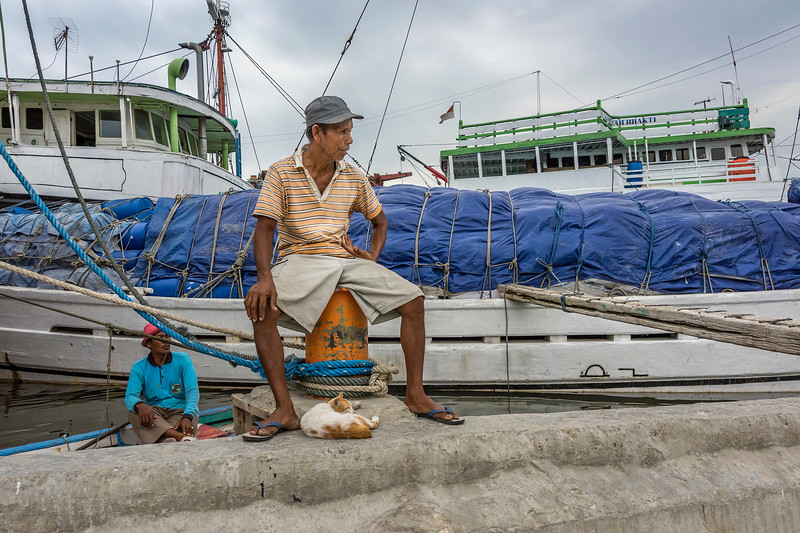 Portrait of a seaman and his sea-cat next to pinisis, Sunda Kelapa Harbour, Jakarta, Indonesia