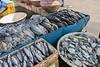 Pasar Ikah at Sunda Kelapa with fish, flies and Indonesian blue swimmer crabs (Portunus pelagicus), Jakarta, Indonesia