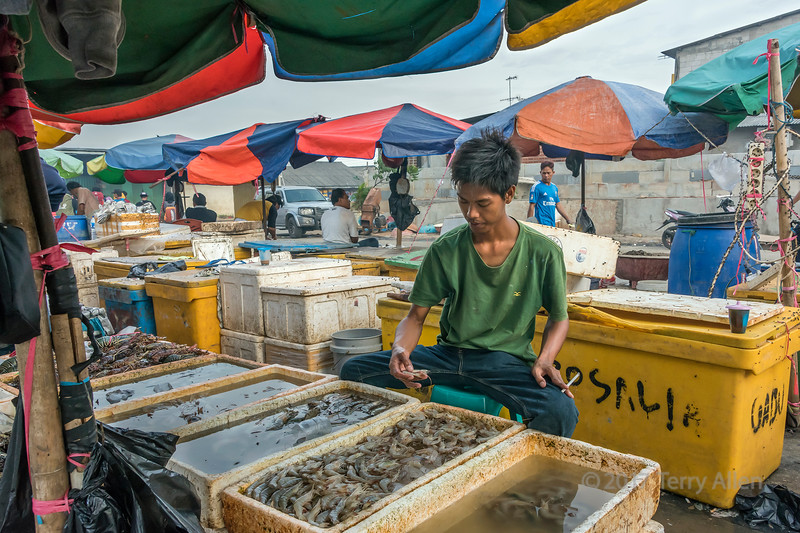 Shrimp in one hand, cigarette in the other, flies galore, Pasar Ikan fish market, Jakarta, Indonesia