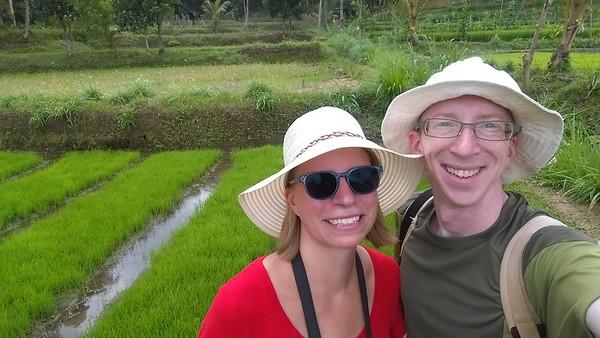 Lombok Rice